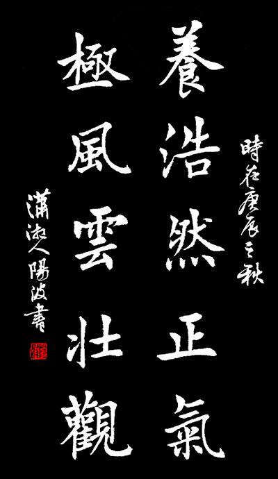 陶阳波,书法家,湖南永州人_湖南名人网